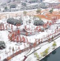 안산시 겨울 풍경(11.24)