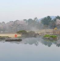 부곡동 제일CC 풍경(04.25)