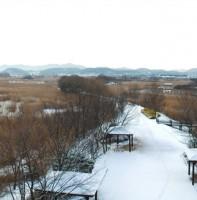 안산갈대습지공원 겨울 풍경(12.03)