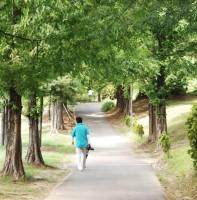 성호공원 풍경(08.03)