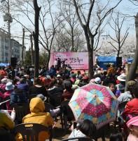 감골벚꽃축제 & 영화길마을 차없는 골목길놀이터(4.11)