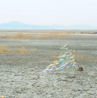 시화호 풍경(2.28)
