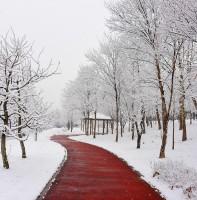 안산의 겨울 풍경(02.28)