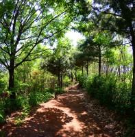조각공원 풍경(05.11)