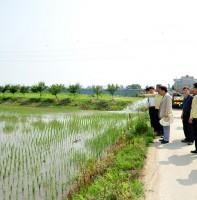 가뭄재해 대책 추진상황 현장점검(06.16)
