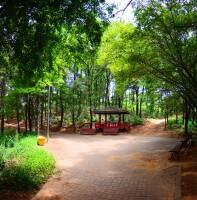 원고잔공원 풍경(07.26)