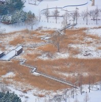 2017 안산의 겨울 풍경(01.20)