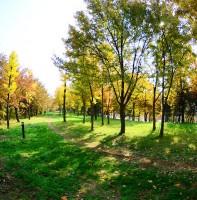 안산의 가을 풍경(11.08)