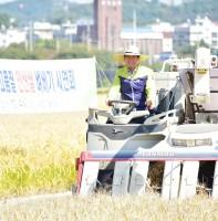 2018년 고품질 안산쌀 벼베기 시연회(10.04)