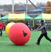 단원구노인지회 체육대회 (11.10)