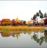 안산의 가을 풍경(10.25)