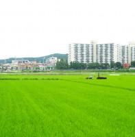 녹색도시 안산(7.10)